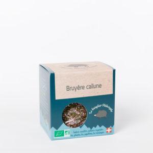 Bruyère callune - Le Sanglier Philosophe