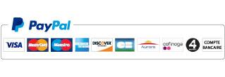Logo Paypal moyens paiement
